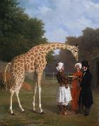 Jacques-Laurent Agasse The Nuian Giraffe (mk25) oil painting artist
