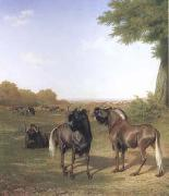 Jacques-Laurent Agasse White-Tailed Gnus (mk25) oil painting artist