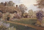 James matthews Ellens Green,near Cranleigh,Surrey (mk37) oil painting artist