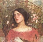 John William Waterhouse The Rose Bower (mk41) oil painting picture wholesale