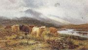 Louis bosworth hurt Highland Cattle on the Banks of a River (mk37) oil painting artist