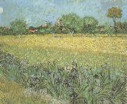 Vincent Van Gogh View of Arles with Irises in the Foreground (nn04) oil painting picture wholesale