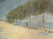 Vincent Van Gogh Wald along the Banks of the Seine near Asnieres (nn04) oil painting picture wholesale