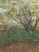 Vincent Van Gogh Orchard in Blosson (nn04) oil painting picture wholesale