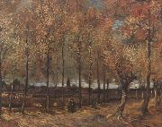 Vincent Van Gogh Lane with Poplars (nn04) oil painting picture wholesale