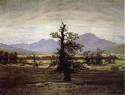 Caspar David Friedrich The Lone Tree oil painting picture wholesale