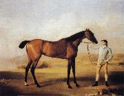 George Stubbs Molly Longlegs with Jockey oil painting picture wholesale