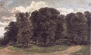 John glover The copse oil painting picture wholesale