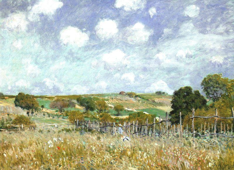 Alfred Sisley Meadow Sweden oil painting art