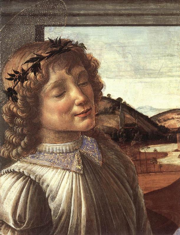 BOTTICELLI, Sandro Madonna and Child with an Angel (detail)  fghfgh oil painting image