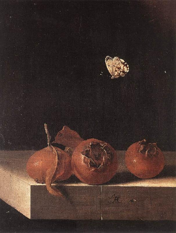 COORTE, Adriaen Three Medlars with a Butterfly df oil painting image