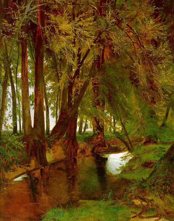 Charles Blechen Woodland with Brook oil painting image