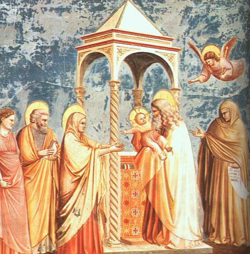 Giotto Scenes from the Life of the Virgin oil painting image