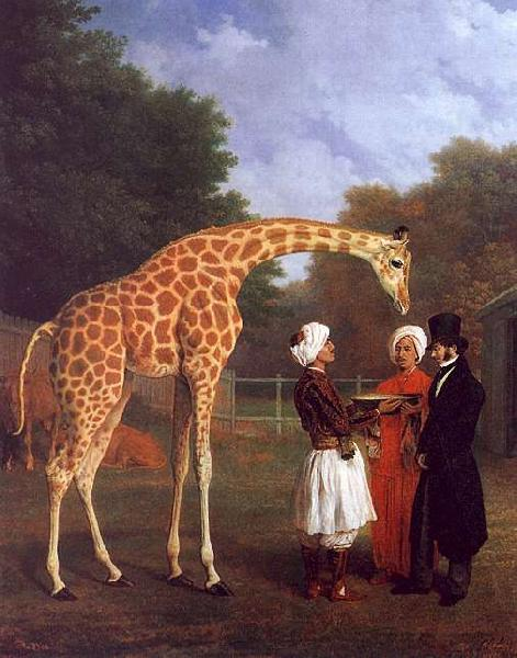 Jacques-Laurent Agasse The Nubian Giraffe oil painting image