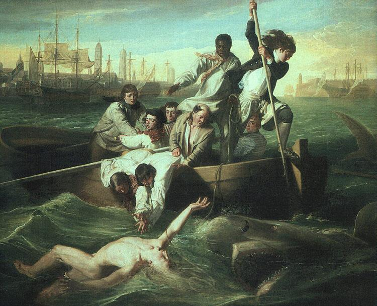 John Singleton Copley Watson and the Shark oil painting image