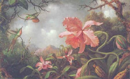 Martin Johnson Heade Hummingbirds and Two Varieties of Orchids Sweden oil painting art