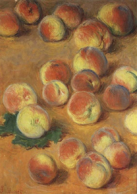 Claude Monet Peaches oil painting picture