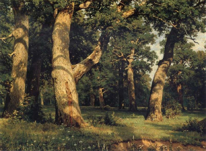 Ivan Shishkin Oak of the Forest oil painting picture