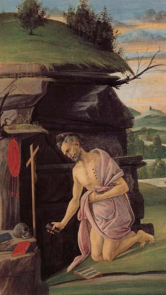 Alessandro Botticelli St.Jerome oil painting image