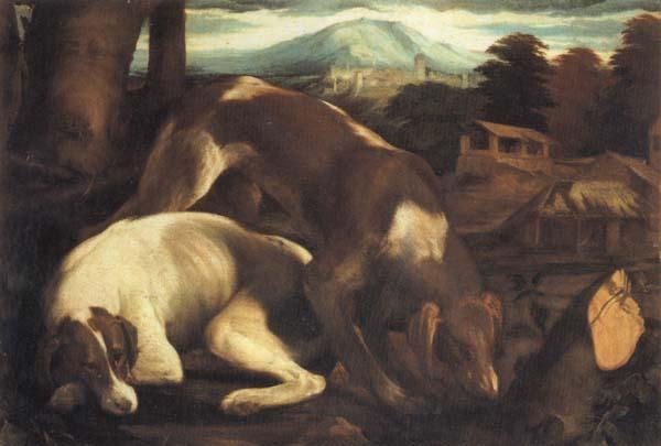 Jacopo Bassano Two Dogs oil painting picture