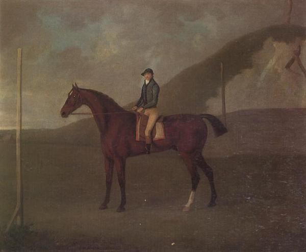 John Nost Sartorius 'Creeper' a Bay colt with Jockey up at the Starting post at the Running Gap in the Devils Ditch,Newmarket oil painting image