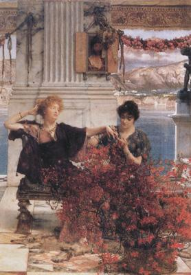 Alma-Tadema, Sir Lawrence Love's Jewelled Fetter (mk23) oil painting image