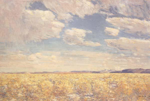 Childe Hassam Afternoon Sky,Harney Desert (mk43) oil painting image